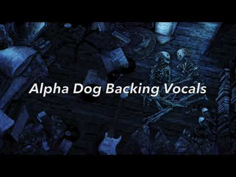 FALL OUT BOY  Alpha Dog Backing Vocals