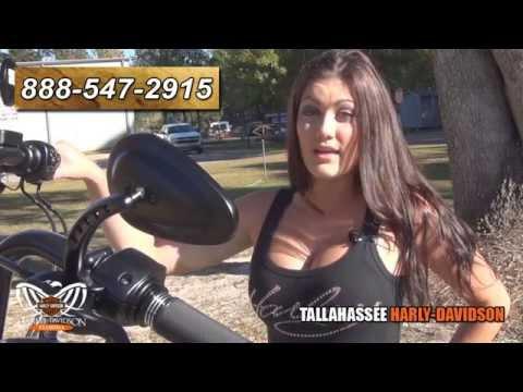 2015 Harley Davidson Softail Slim Sexy Babe