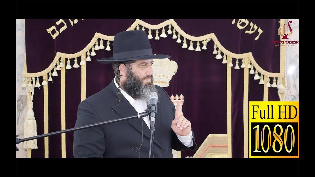 הרב רונן שאולוב - דיבור בבית הכנסת   סיבת חורבן הבית   נאמנות   צניעות   חסד   נהריה 15-7-2018