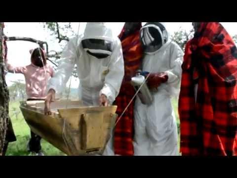 Oltumo Maasai Project - Creating Foundations, Feb-April 2015