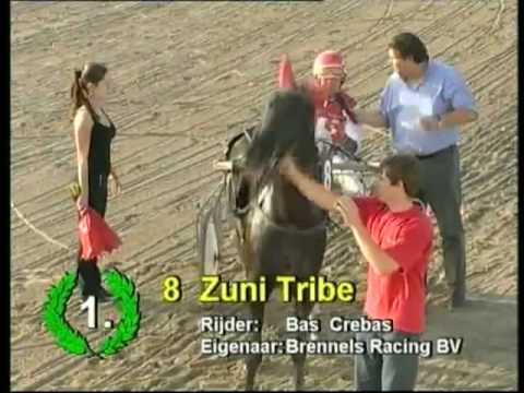 Zuni Tribe - Bas Crebas (1,20,3), 2. Youngstar Fili, 3. Voice of Joyce, 4. Raisa Jet