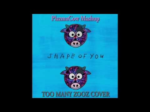 Shape of You TOO MANY ZOOZ Cover (PlazmaCow Mashup)