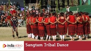 Sangtam tribal dance of Nagaland | India Video