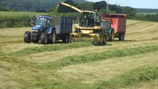 Silage 09/10