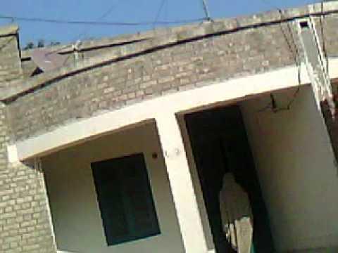 Chaudhary Safdar Wapda Colony Kot Addu Ghashti Sexwapda Mulazim