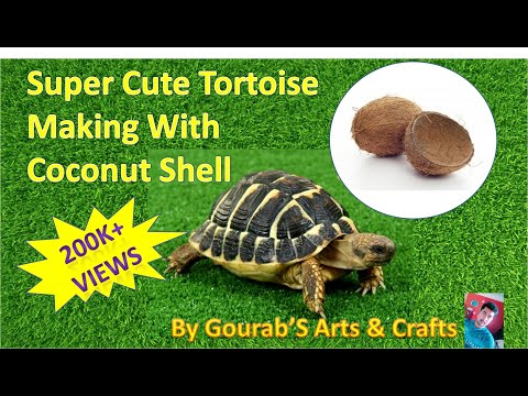 HandMade Turtle With Coconut Shell | Best From Waste Material- Hand Creativity-Easy Step to Follow |