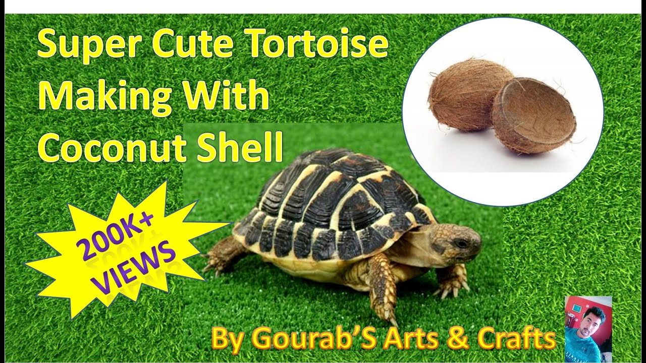 Handmade Turtle With Coconut Shell Best From Waste Material Hand