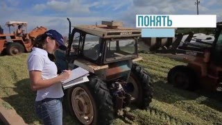 видео Кормопроизводство- отрасль с\хозяйства