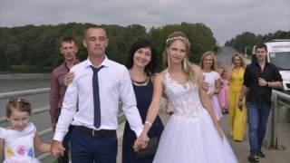 наша свадьба г. Тула