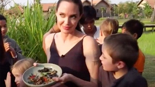 WATCH Angelina Jolie and Family Bite the Head Off a Spider in Gross Interview
