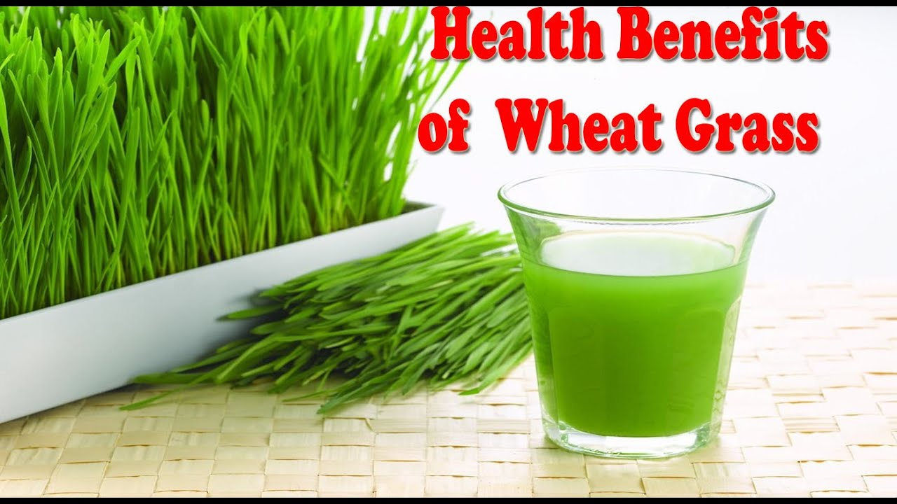 Wheatgrass juice for hair growth