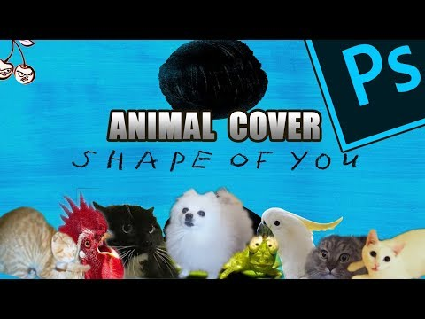 Ed Sheeran - Shape Of You (Animal Cover) [only_animal_sounds]
