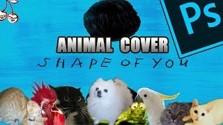 Baixar Ed Sheeran - Shape Of You (Animal Cover) [only_animal_sounds]