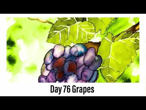 Watercolor Beginner - Day 76 Grapes