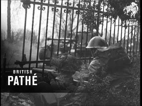 West Front War Report (1945)