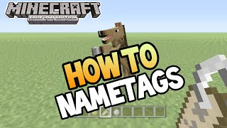 Minecraft (Xbox 360/PS3) - TU19 UPDATE! - HOW TO USE NAMETAGS - TUTORIAL (Guide)