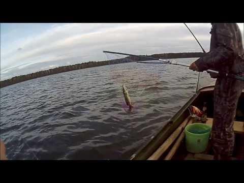 рыбалка на щучьем черноусово