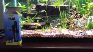 Tetra HT30 Aquarium Heater Review