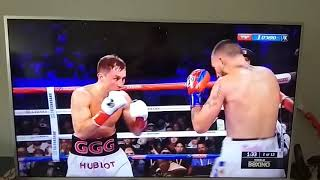 gennady golovkin knocked out vanes martirosyan HD