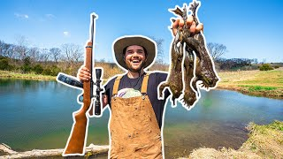 BACKYARD Bullfrog Hunting CATCH CLEAN COOK!!!!