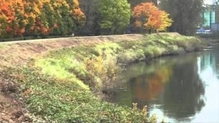 """♥ """"Vilja Song"""" - André Rieu"""
