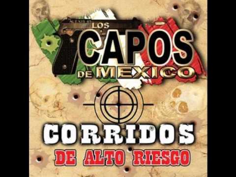 Los Capos De Mexico El Chepe Terron