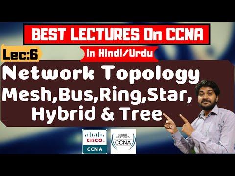 Network Topology-Mesh,Bus,Ring,Star,hybrid And Tree Topology-हिंदी/urdu   CCNA Tutorials