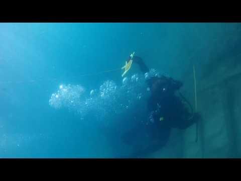 diving vero beach boiler wreck 7/4/17