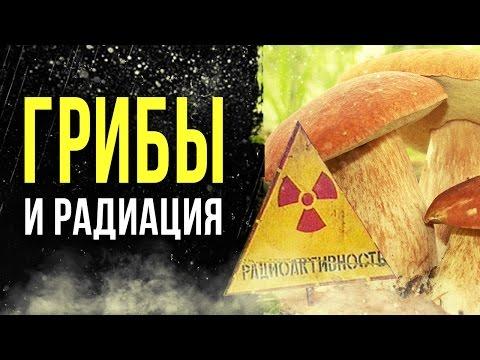 ☢ Радиация в