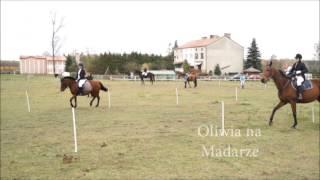 Hubertus 2014  Horse games  Stajnia Muszaki