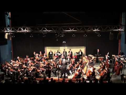 Concerto pour Violon de Tchaikovsky - 1er Mouvement SARAH NEMTANU