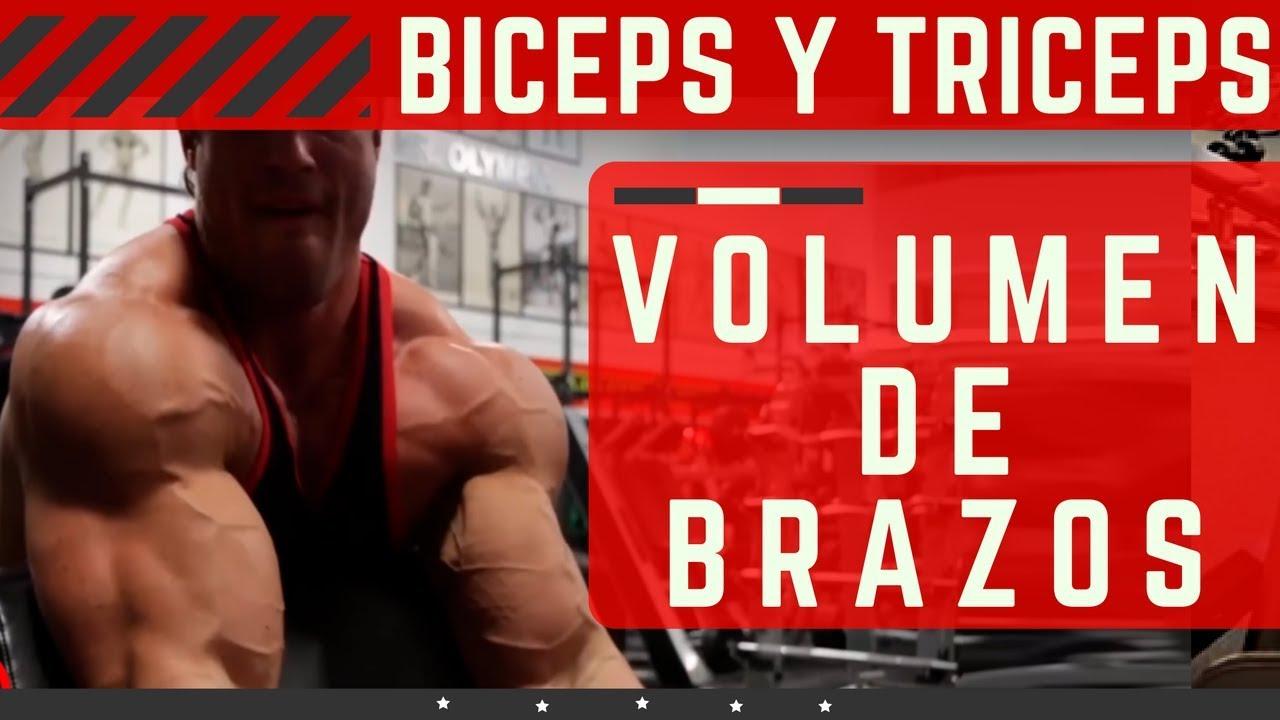 Rutina biceps y triceps pdf