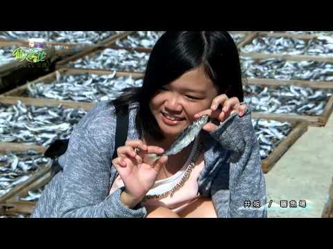 仙人掌花女孩22分鐘版 Cactus Flower Girl 22 minutes