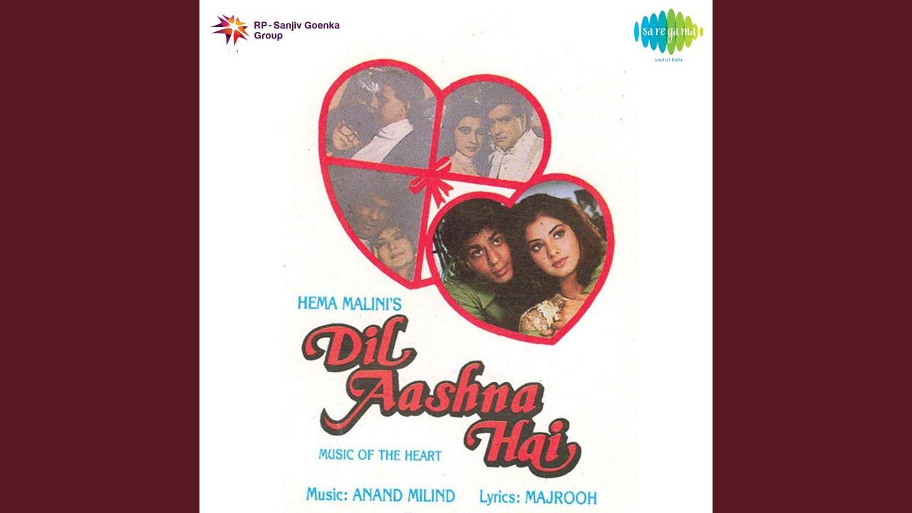 Dil Aashna Hai Lyrics Translation | Dil Aashna Hai | Hindi