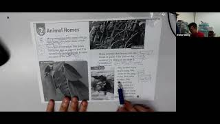 Publication Date: 2021-05-18 | Video Title: Animal Homes