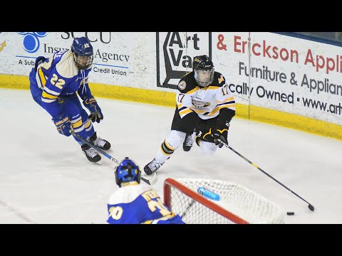 Hockey Highlights - Tech At LSSU - Feb 15, 2019