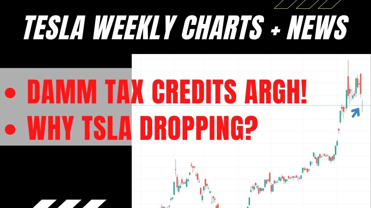 TSLA Weekly Analysis | Tesla Stock | Tax Credits