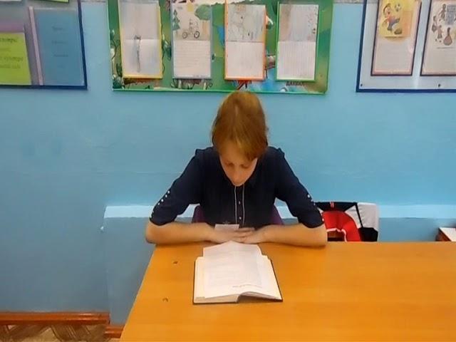 Изображение предпросмотра прочтения – МаринаФилатова читает произведение «Сказка о серебряной птице и жёлтой лягушке» И.С.Тургенева