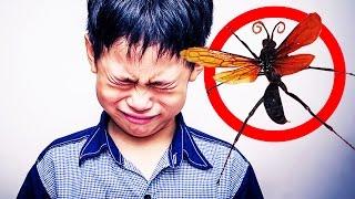 7 Tiere die unglaubliche Schmerzen verursachen!
