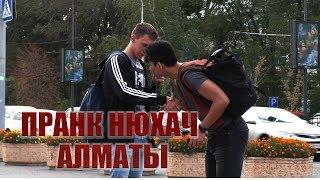 Нюхает Пранк Алматы