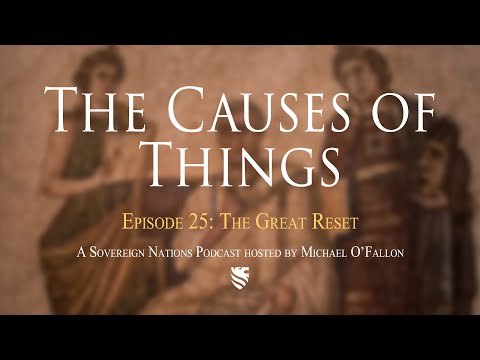 The Great Reset | The Causes of Things Ep. 25
