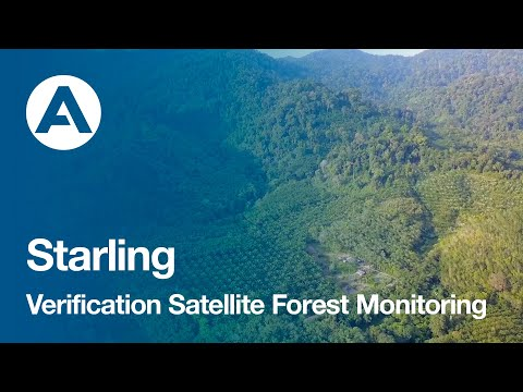 Starling Verification Satellite Forest Monitoring