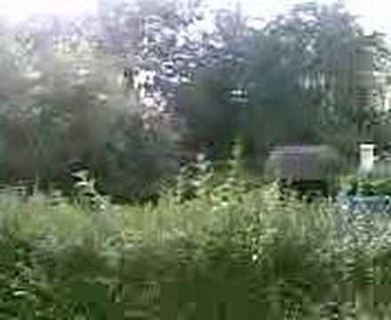 Vidéos prise à partir d'un Nokia 8600 Luna