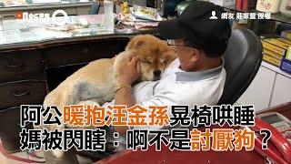 阿公暖抱汪金孫晃椅哄睡  媽被閃瞎:啊不是討厭狗?