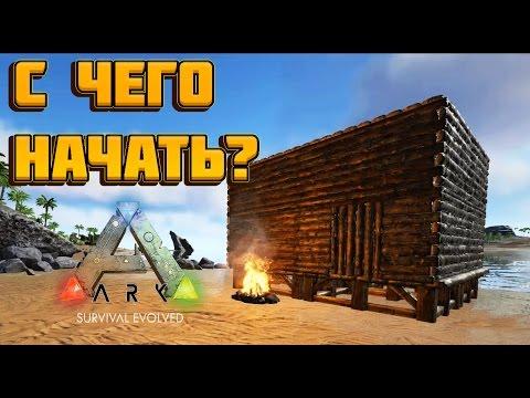 С ЧЕГО НАЧАТЬ? [ГАЙД] ➱ Ark: Survival Evolved #1