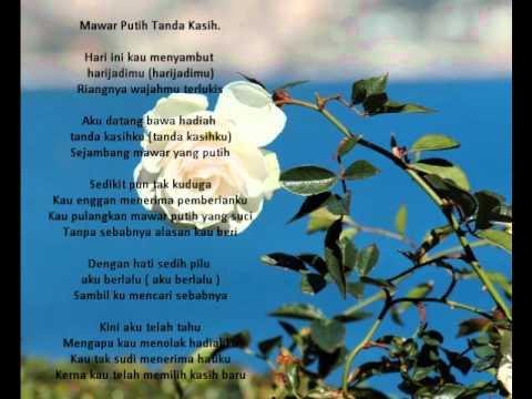 Lirik lagu Mawar Putih Tanda Kasih