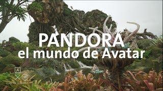 Pandora en 4K, el mundo de AVATAR en Disney | Alan por el mundo