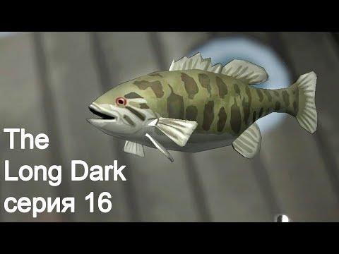 The Long Dark (сюжет Wintermute). Серия 16. Рыба
