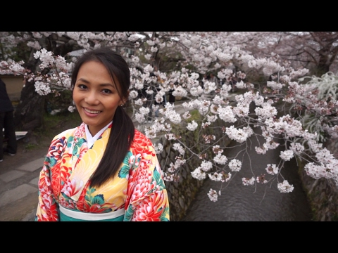 Vlog 4 Cherry Blossom Season at Philosophers Path in Kyoto Japan