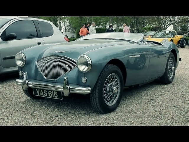 Me and My - Amazing Austin Healey 100/4